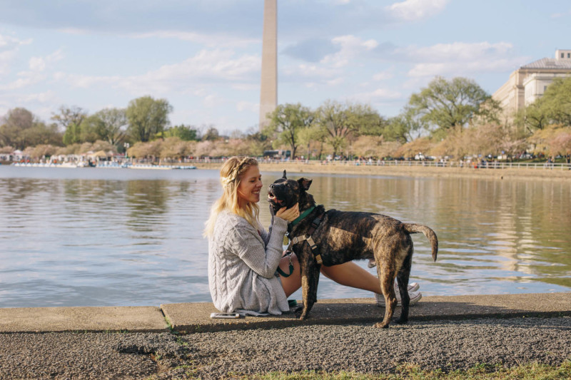 carrie and rupert at tidal basin during cherry blossoms caretolook